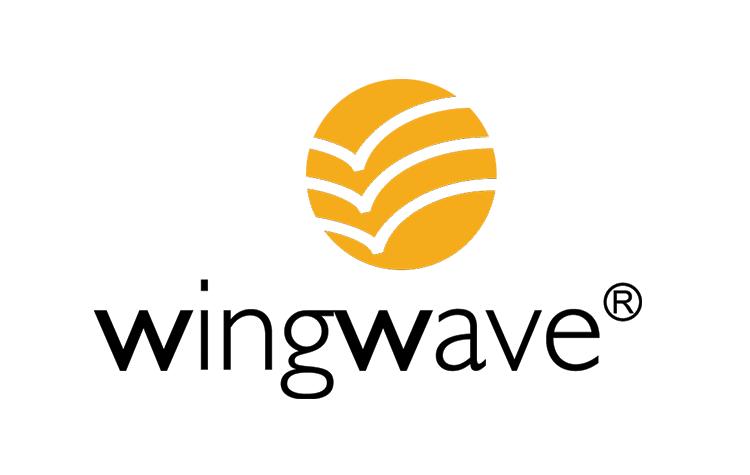 Coaching - Wingwave