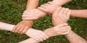 Trening - Gradenje poverenja i duha zajedništva