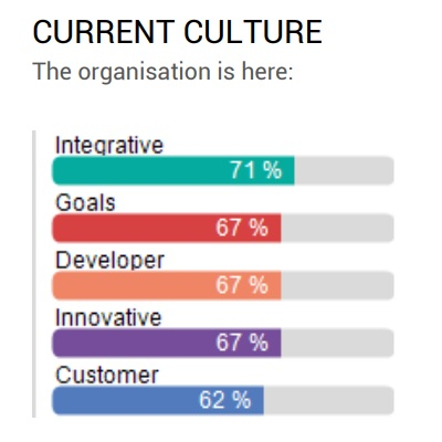 Assessment - Organizaciona kultura