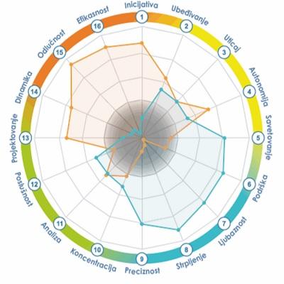 Assessment - Profil podudarnosti lidera