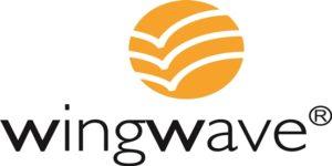 Wingwave coaching